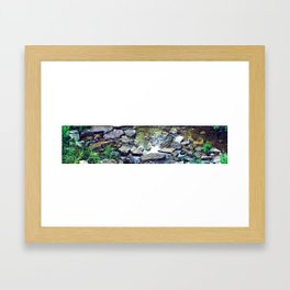 Stepping Stones Framed Art Print