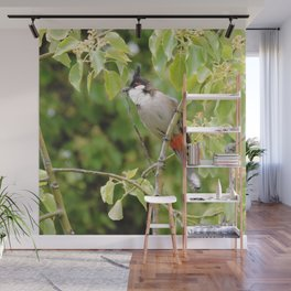 Red-Whiskered Bulbul -- 2 Wall Mural