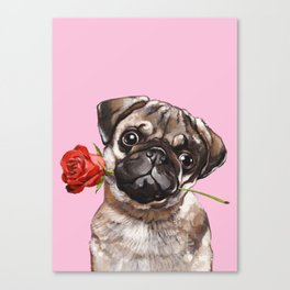 Pug with Red Rose Canvas Print
