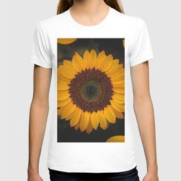 Sunflower yellow green T-shirt