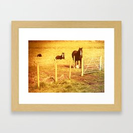 Vintage Horses Framed Art Print