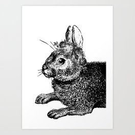 The Rabbit and Roses | Vintage Rabbit with Flower Crown | Rabbit Portrait | Bunny | Black and White Art Print