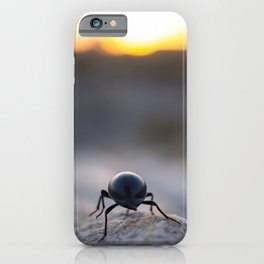 Beetle making it's way to the sun | Travel photography South Africa iPhone Case