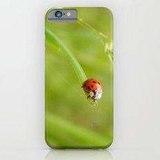 Ladybug Slim Case iPhone 6s