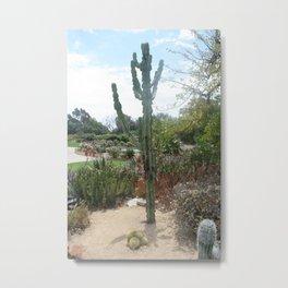 Cali Cacti Metal Print