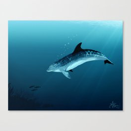 """Blackfin the Dolphin"" by Amber Marine ~ Digital Art, (Copyright 2014) Canvas Print"
