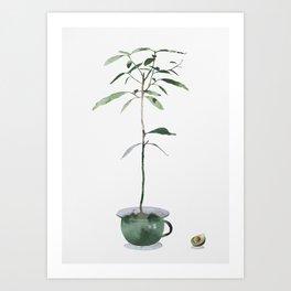 Avocado Tree Art Print