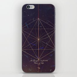 The Hexagon Construction iPhone Skin