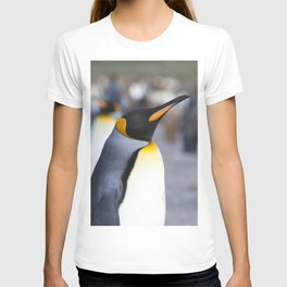King Penguins T-shirt