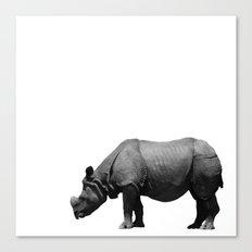 Bored Rhino Canvas Print