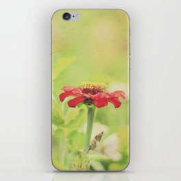 Red Flower on a Summer Morning iPhone Skin