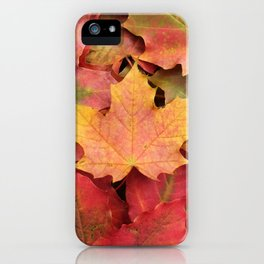 Yellow, green and red maple leaves iPhone Case