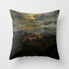 BAR#8061 Throw Pillow