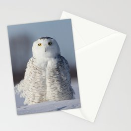 Saint Snowy Stationery Cards