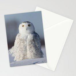 Saint Snowy Stationery Cards