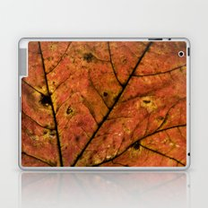 Fall Leaf III Laptop & iPad Skin