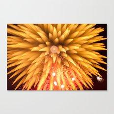 Fireworks - Philippines 8 Canvas Print