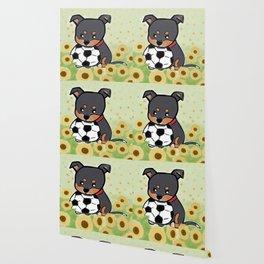 Charlie pup, Black Terrier pup Wallpaper