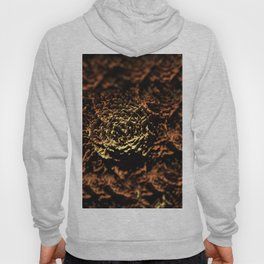Wooden roses landscape texture field background Hoody