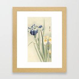 Ohara Koson, Iris Woodblock Print Framed Art Print