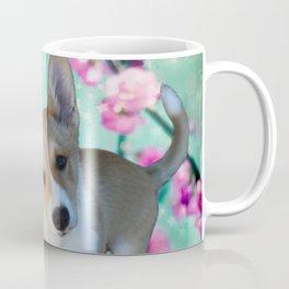 cuty cute corgi puppy of the queen of england Elisabeth, spring blue pink flower power blossom Coffee Mug