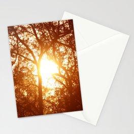 Canopy Sunrise Stationery Cards
