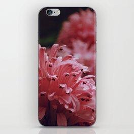 Pink Bellingrath Floral iPhone Skin