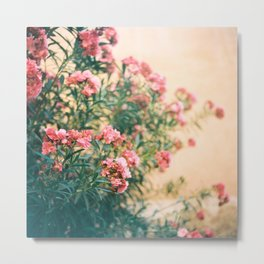 pink flowers in front of yellow wall Metal Print