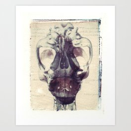 X Ray Terrestrial No. 1 Art Print
