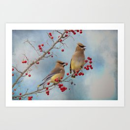 Cedar Waxwing Pair Art Print