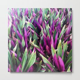 Two Sided Metal Print