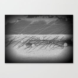 Grey Matter Canvas Print