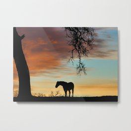 Beautiful Solitary Horse and Oak Tree With A Southwestern Colored Sky Metal Print