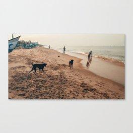 Dogs enjoying beach Canvas Print