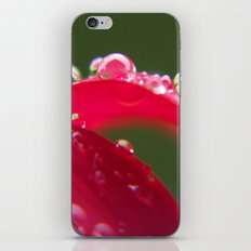 Flowers iPhone & iPod Skin