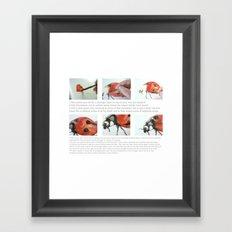 Art Demo on a Cushion - Ladybug Framed Art Print