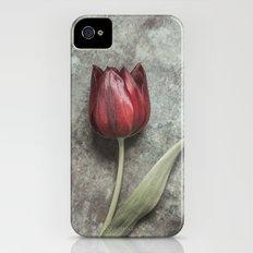 One Red Tulip Slim Case iPhone (4, 4s)