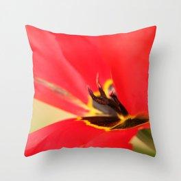 Papageientulpe Throw Pillow