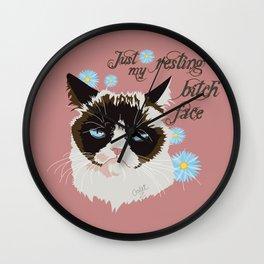 Resting Cat Face Wall Clock