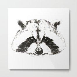racoon Metal Print