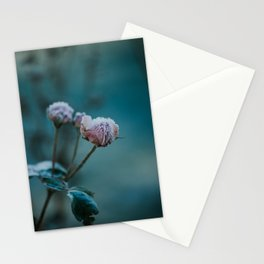 Frosted Rose Stationery Cards