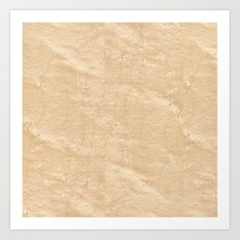 Birdseye Maple Wood Art Print