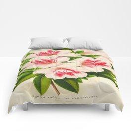 Azalea Indica Vintage Botanical Floral Flower Plant Scientific Illustration Comforters