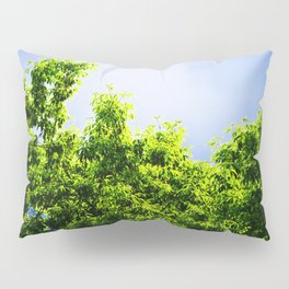 Storm Clouds Looming Pillow Sham