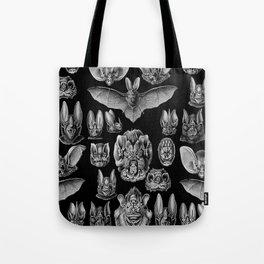 1904 Haeckel Chiroptera Tote Bag