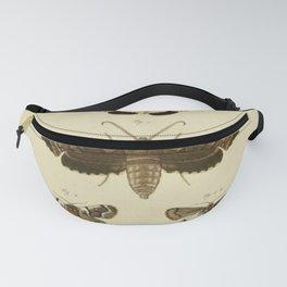 Vintage Moths Fanny Pack