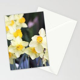 Yellow Daffodil Flowers Stationery Cards