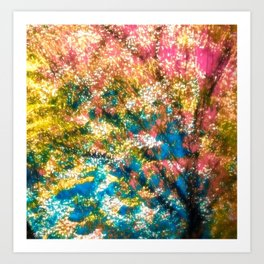 love through the lens Kunstdrucke