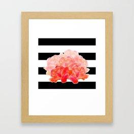 Roses black and white background Framed Art Print