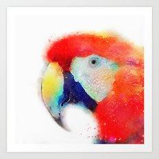 The Articulate - Parrot Art Print